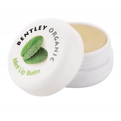 ORGANICZNY Balsam do Ust, Miętowy, 10g Bentley Organic